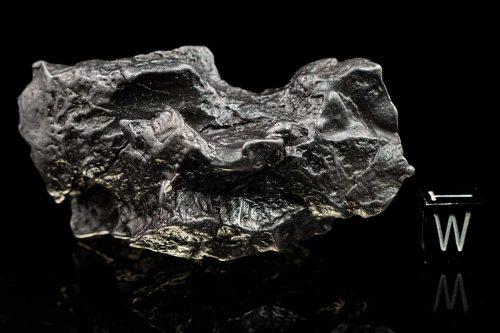 Sikhote-Alin 196.4 Grams